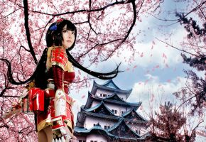 Samurai Warriors 4 : I will protect this castle by pinkyluxun