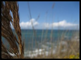 Photographie Plage by emicathe