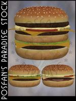 Fast Food 008 Burger by poserfan-stock