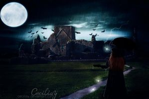 Walking in the Rain 2 by ceciliay