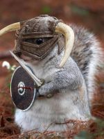 Barbarian Squirel by coucoucmoa