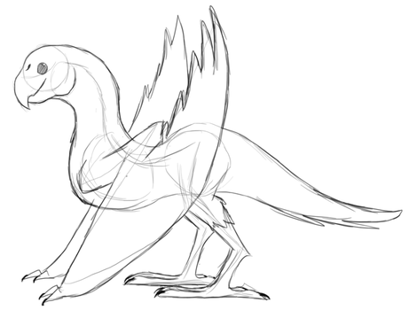 Lovebird Wyvern - Sketch by BashfulSoul