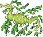 Leafy Sea Dragon by ZioCorvid