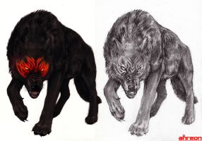 Black Wolf by akreon