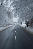 Snowscape Stock 83 by Sed-rah-Stock