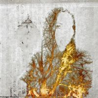 palimpsest by Migrena