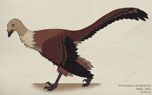 100--ARCHAEOPTERYX LITHOGRAPHICA by Green-Mamba
