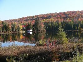 Autumn at the Lake by Mishall