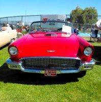 1957 Ford T-Bird by Photos-By-Michelle