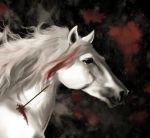 The Horse by Substantia-Nigra