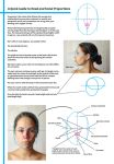 Head and Facial Proportions - Quick Guide Tutorial by charligal-stock