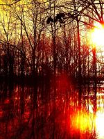 Red Water Flood by EyesofTruth