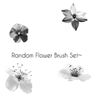 Random Flowers Brush Set. by o0-Rawrtastic-0o