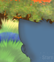 -Peeking into Windclan- by StarnSecret