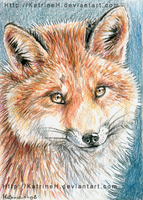 ACEO red fox by KatrineH