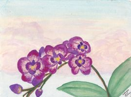 Purple Orchids by Mariannedee