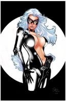 Black Cat by jFury