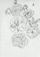 Clustering Roses by AceOfKeys72