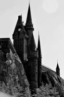 Harry Potter Castle by doyles-slave