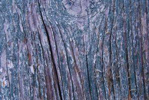 wood texture 2 by Lydiie