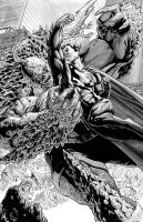 Superman vs Doomsday by TonyParkerArt