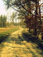 Way to spring by EricaOscura