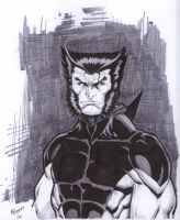 Wolverine Unmasked by Kid-Destructo