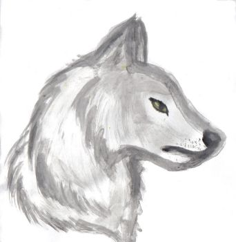 White Wolf Watercolor Practice by Kay-Chii