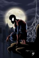 spiderman by Patrick-Hennings