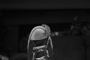 Geckos and Converse by oppen