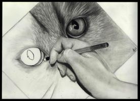 Drawing A Cat by missperple