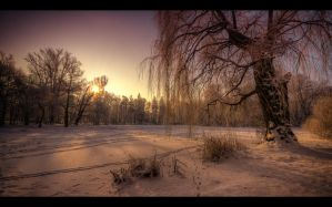 Winter scenery... 8 by PawelJG