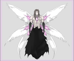 Aizen Battle Form by Arrancarfighter