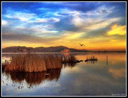 HDR LAKE by dolceribelle