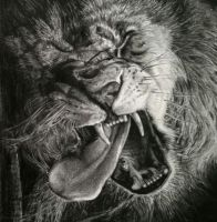Lion, charcoal (close up) A4 by Helsartpage