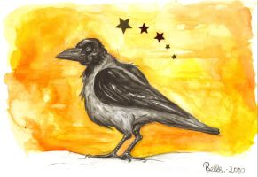 Crow by bellls