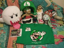 Stuff I Got at Nintendo World's LM DM Launch by MarioSimpson1