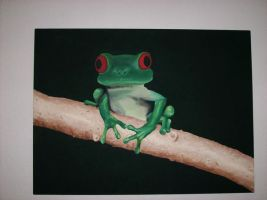 missy's frog by TheOnlySarah
