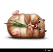 Hamsters on diet by Ekimma