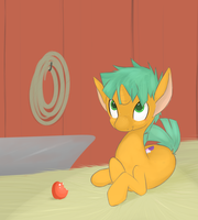 Best small horse by Kryptchild