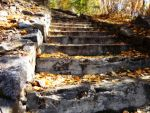 Stairs in autumn1 by VeinerT