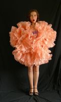 tutu barbie flower by magikstock