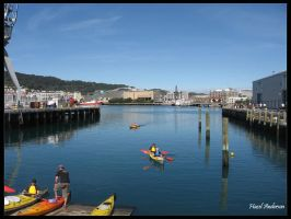 Wellington waterfront by hazeldazel