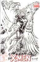 The Dark Phoenix - Sketch Cover by Bankster