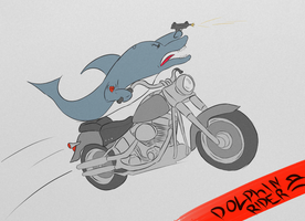 Motorcycle Dolphin by Shattywack
