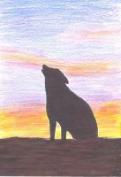 howling wolf by Hedwigs-art