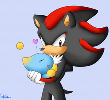 Shadow and Chao by xShadilverx