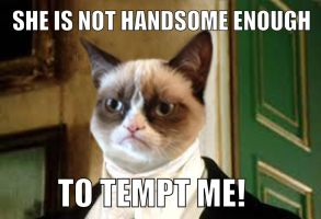 Grumpy Cat Mr Darcy by TzarinaRegina