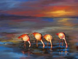 Flamingos by shults