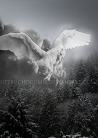 THE STORMBRINGER by Chocomix